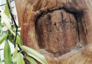 lattiku-nimetahed-puule-graveeritud